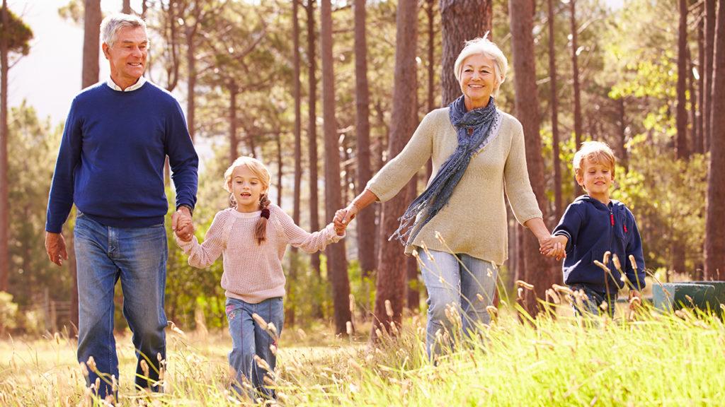 Прогулка с внуками