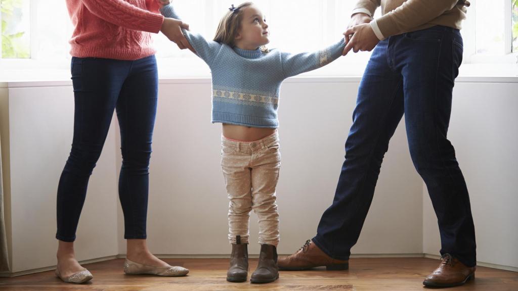 При наличии маленьких детей развод возможен только через суд